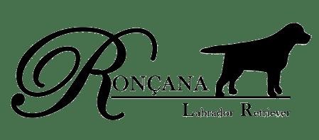 Ronçana